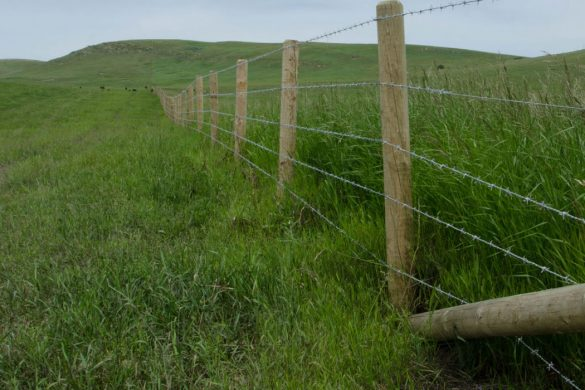 Wire Fences | Austech Custom Fencing